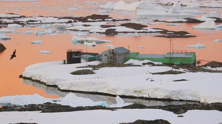 Curious stories of Antarctica: how and why the UK presented its research base to Ukraine