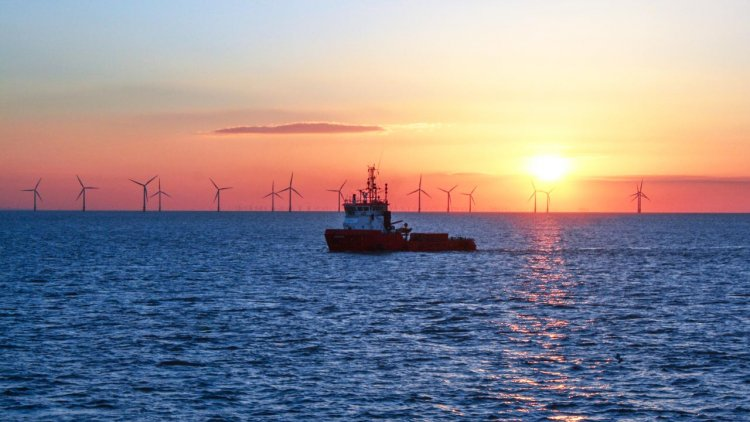 TotalEnergies signs Renewable Power Purchase Agreement with Air Liquide