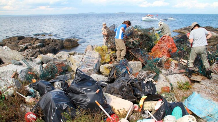NOAA awards $7.3 million for marine debris removal, prevention, and research